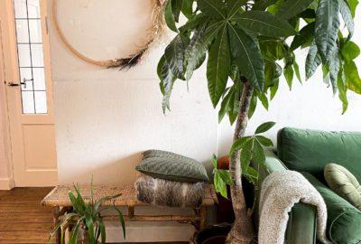 krans van droogbloemen in woonkamer